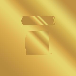 CASE01